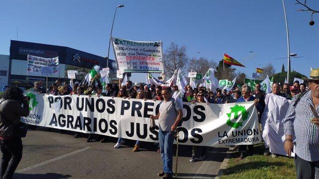 Agricultores extremeños se concentran este miércoles en Mérida para trasladar a