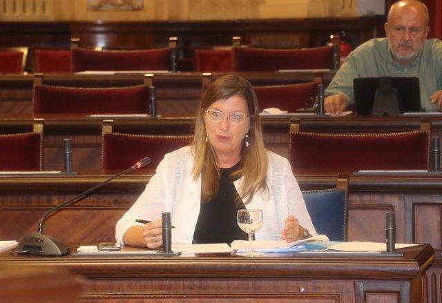 La consellera de Salud y Consumo, Patricia Gómez, en el Parlament.