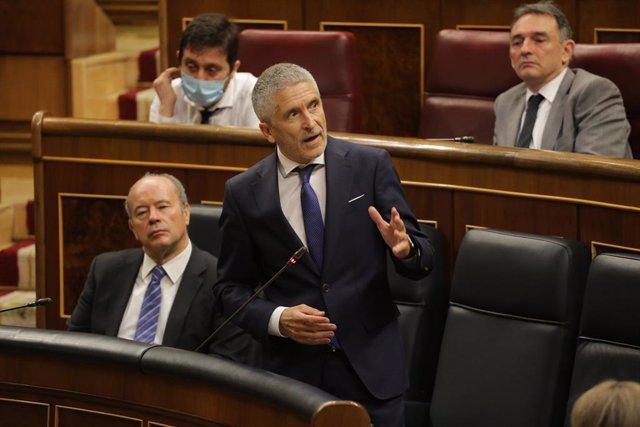 El ministro del Interior, Fernando Grande-Marlaska, en el Congreso
