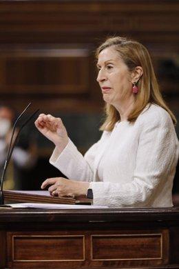 La vicepresidenta segunda del Congreso y diputada del PP, Ana Pastor,