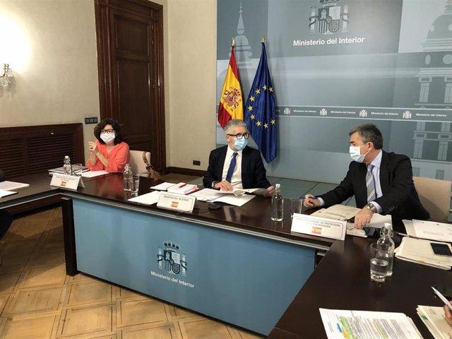 El ministro del Interior, Fernando Grande-Marlaska, preside la reunión del Pleno del Consejo Nacional de Protección Civil