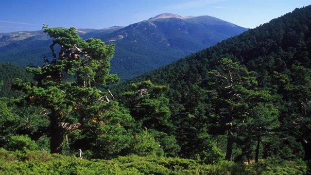 Parque Nacional del Guadarrama