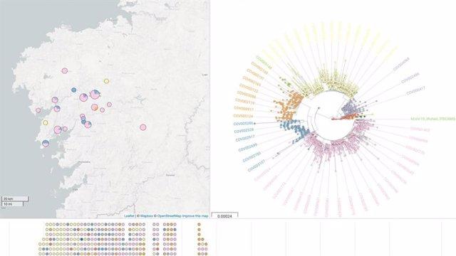 Mapa y árbol filogenético de NextSpain