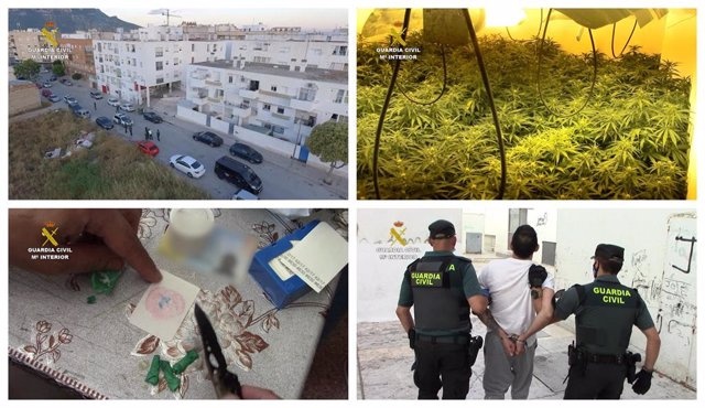 Collage que muestra distintas fases de la explotación de la operación