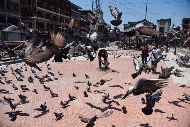 Coronavirus en Srinagar, Cachemira india
