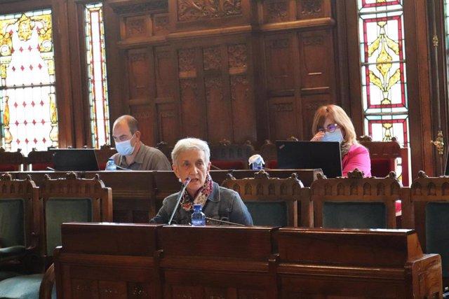 La consejera de Educación, Carmen Suárez , en la Comisión de la Junta General.