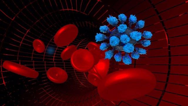 El coronavirus realiza cambios que hacen que las células no lo reconozcan
