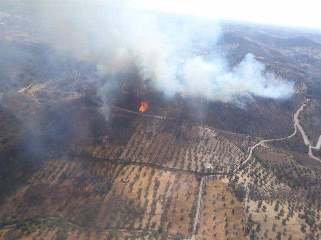 Imatge de recurs d'un incendi forestal a Portugal.