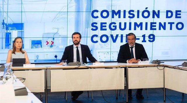 El líder del PP, Pablo Casado, preside la Comisión de Seguimiento del Covid-19 del PP con cargos de su partido. En Madrid, a 27 de julio de 2020.