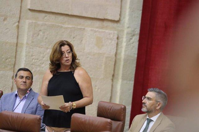 Sevilla.- Coronavirus.- Cs valora las ayudas autonómicas al pequeño comercio y la artesanía ante la nueva crisis