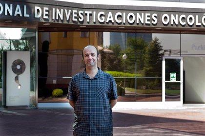 El CNIO investigará un nuevo tratamiento para tumores pediátricos con financiación europea