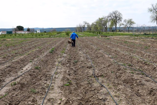 """Un agricultor en un campo de Aranjuez del Instituto Madrileño de Investigación y Desarrollo Rural, Agrario y Alimentario (IMIDRA), Centro de Transferencia Tecnológica """"La Chimenea"""", en Aranjuez/Madrid (España) a 30 de marzo de 2020."""