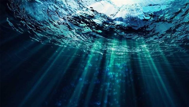 Foto genérica del fondo marino