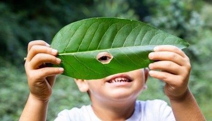 Las compañías farmacéuticas logran reducir más de 178 toneladas de materiales gracias al ecodiseño de los envases