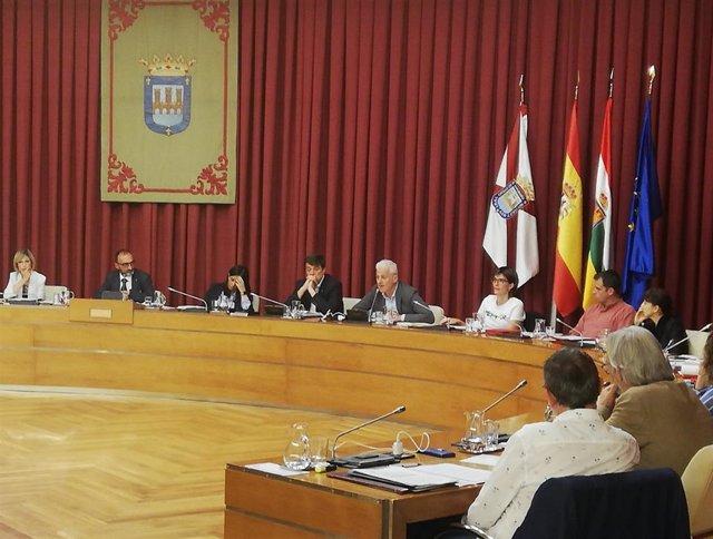 El alcalde de Logroño, Pablo Hermoso de Mendoza, ha intervenido en el pleno municipal para abordar diversos asuntos relacionados con la educación