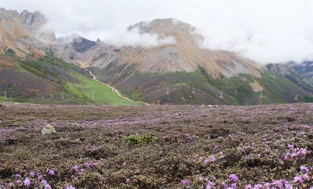 Montañas Hengduan