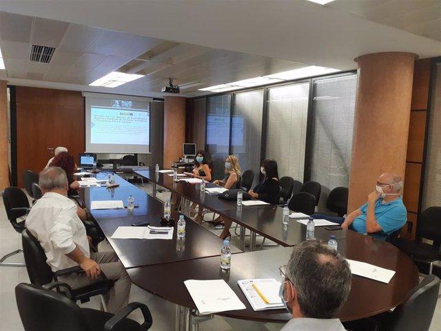 """Presentación telemática del proyecto 'Medicina Personalizada Big Data"""""""