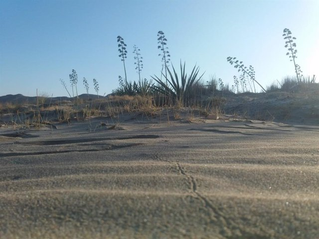 Paisaje del parque natural de Cabo de Gata