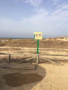 Cádiz.- Sucesos.- Un total de 88 denuncias levantadas en una nueva operación con