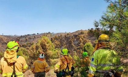 Controlado el incendio de Férez, en el que trabajan 12 medios y 50 efectivos
