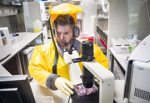 Coronavirus.- Alemania confirma 240 nuevos casos de coronavirus y siete fallecid