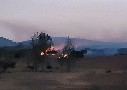 Continúa la evolución positiva del incendio en Plasencia y se suma un helicóptero para estabilizar el fuego