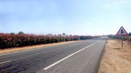 Transportes lanza contratos de conservación de carreteras por 75 millones