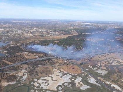 Estabilizado el incendio forestal declarado en el paraje Costa Esuri de Ayamonte (Huelva)