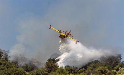 El fuego de El Real de San Vicente desciende a Nivel 0