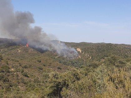 Una veintena de bomberos combaten por la noche el fuego de Aznalcóllar (Sevilla), con alta carga combustible