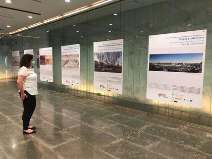 La Sala Antiquarium de Sevilla reabre con nuevas muestras que se incorporan a la agenda de 'Veraneo en la City'