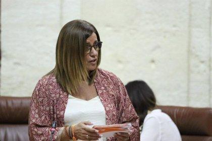 Hormigo señala que Cs cumple con los más vulnerables reforzando Servicios Sociales en Sevilla para agilizar Renta Mínima