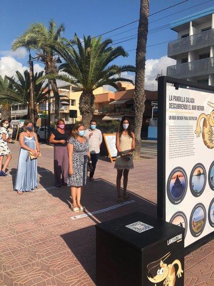 La exposición interactiva 'La pandilla salada, descubriendo el Mar Menor' recorrerá los municipios ribereños en agosto