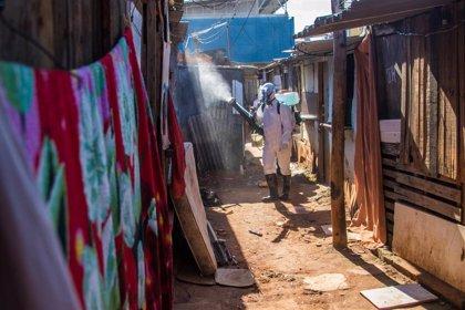 Coronavirus.- Brasil confirma más de 1.400 muertes a causa del coronavirus, la cifra más alta en un mes