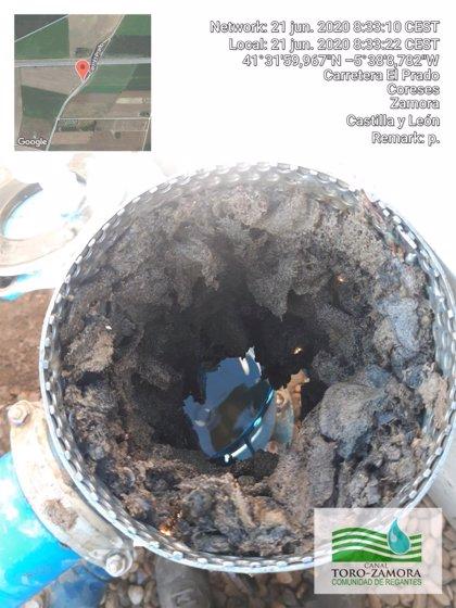 Alertan de un microorganismo invasor en infraestructuras de riego en Zamora