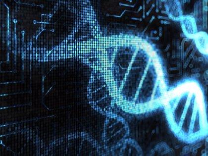Unos genes relacionados con el síndrome de Down podrían proteger contra tumores sólidos