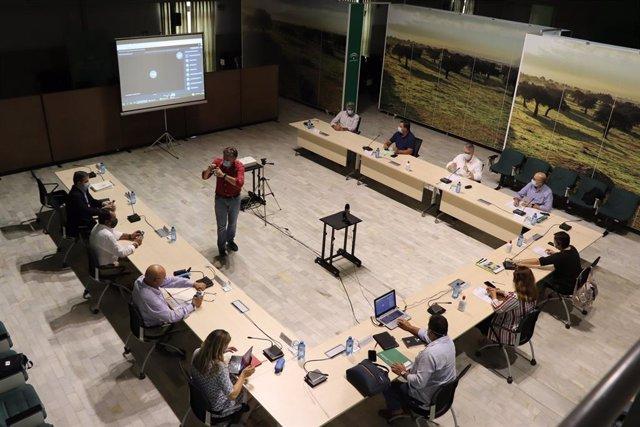 Carmen Crespo se reúne con el Consejo Rector de Cooperativas Agro-alimentarias de Andalucía