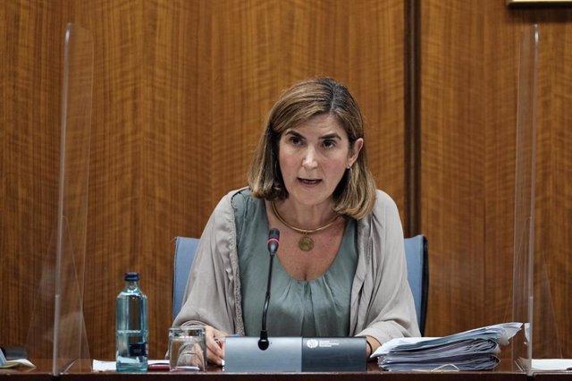 La consejera de Empleo, Rocío Blanco, este jueves durante su comparecencia parlamentaria en comisión.