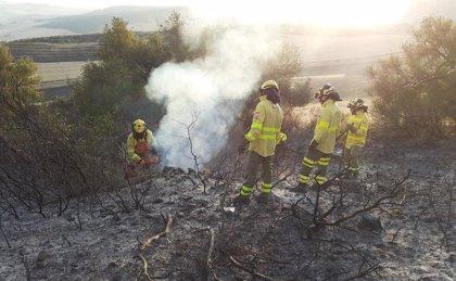 Extinguido el incendio forestal declarado el pasado domingo en Olvera (Cádiz)