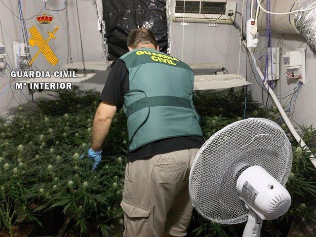 Agente de la Guardia Civil en uno de los lugares de viviendas de Gádor (Almería) donde cultivaban plantas de marihuana