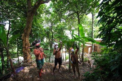Brasil.- Brasil suspende una operación contra la minería ilegal en tierras indígenas a petición de los habitantes