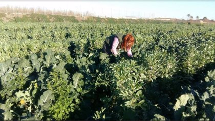Agricultura.- La UPCT se une a 'fields4ever', una iniciativa global para la conservación y vigilancia de la salud del suelo