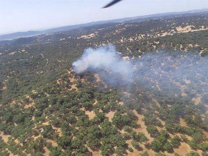 Extinguido el incendio forestal de La Puebla de Los Infantes (Sevilla)