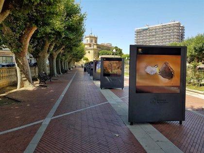 Santo Domingo acoge hasta el 17 de agosto la exposición fotográfica al aire libre 'Naturaleza de La Rioja'