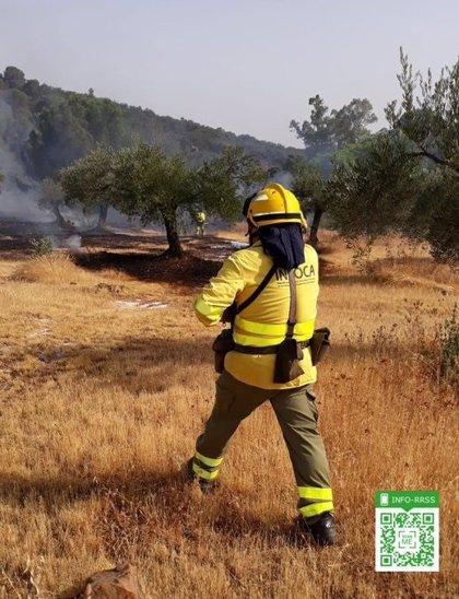 Declarado un incendio forestal en Bentarique (Almería)