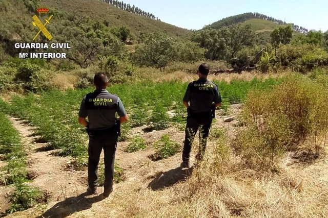 Agentes de la Guardia Civil, en Almonaster la Real (Huelva).