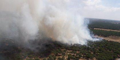 Activado nivel 1 en Simancas (Valladolid) por un incendio que podría afectar a más de 30 hectáreas