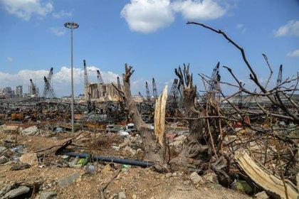 Líbano.- Ascienden a 220 los muertos por las explosiones en el puerto de Beirut
