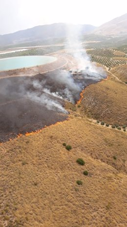 Incendio forestal declarado en Jódar.