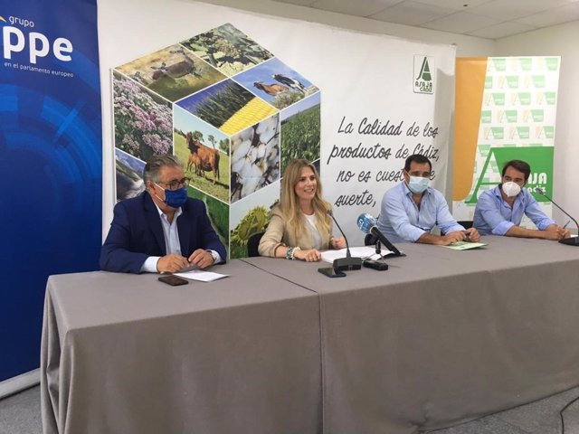 """Cádiz.- PP asegura que el Gobierno """"no está en sintonía con las reivindicaciones"""